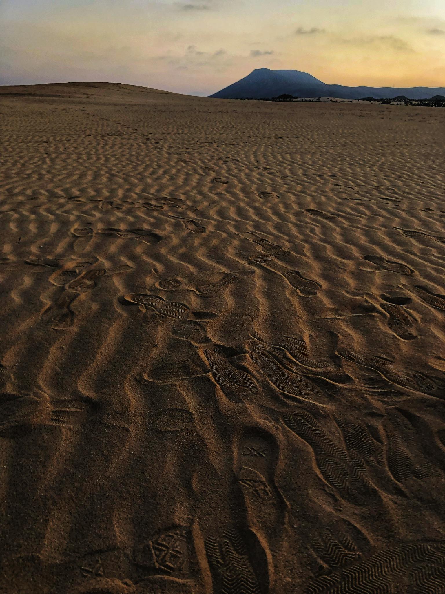 Dunes De Corralejo
